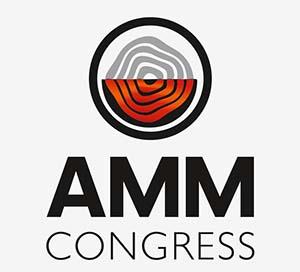 AMM 2020: Инвестиции в будущее