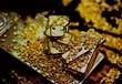 Казахстан в январе-апреле сократил производство золота на 3,7% - до 13,6 тонны