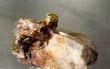 Газпромбанк приобрёл долю в 15% в золоторудной компании «Павлик», говорится в сообщении кредитной организации